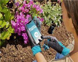 Перчатки садовые, размер 7 S Gardena_2