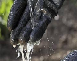Перчатки садовые для работы с почвой, размер 8 M Gardena_3